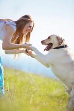 Tierheilpraxis für Hunde, Katzen, Kaninchen etc.